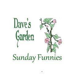 Garden Jokes And Humor Dave 39 S Garden Sunday Funnies 01 03