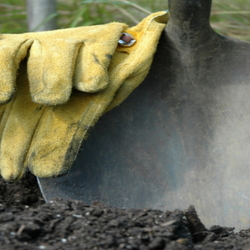 A pair of gardening gloves resting on the top of a shovel stuck in the dirt.