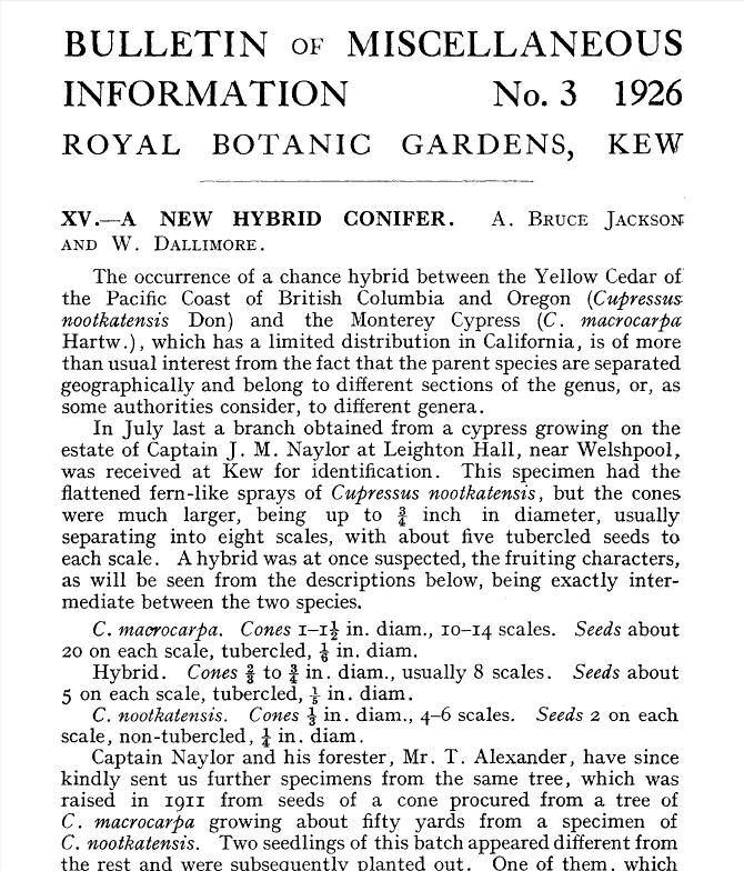 Kew Bulletin for Leylandii