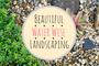 7 Ways to Create a Luscious Drought-Tolerant Garden