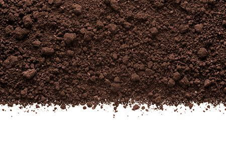 Humus soil 101 for Rich soil definition