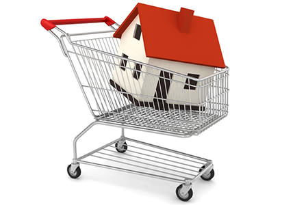 how to buy a house without a job