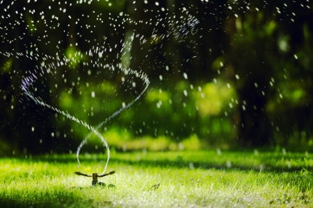 How Long Should I Run My Sprinklers