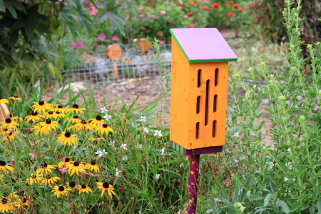 Diy butterfly house in 5 steps for Steps to building a house yourself