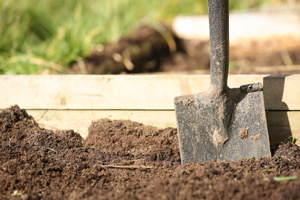 How to plant a potager garden for Soil yourself