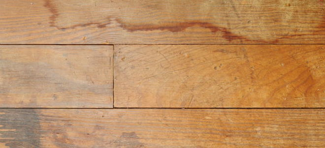 How To Repair Your Water Damaged Floor Doityourself Com