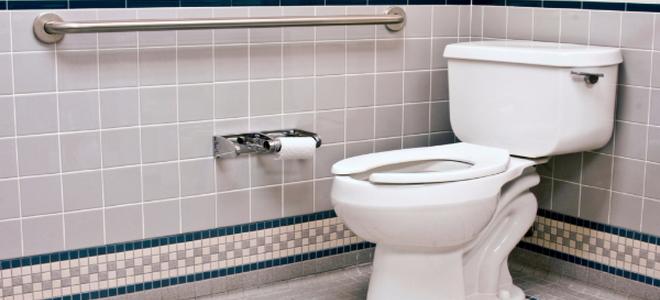 Handicap bathroom grab bars
