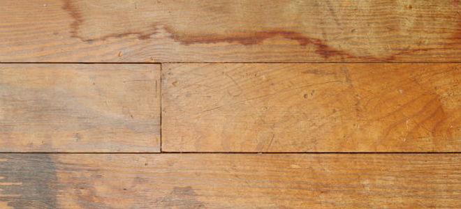 How To Fix Water Damage On A Hardwood Floor Doityourself Com