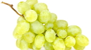 Grapes_000018353072_Small.jpg