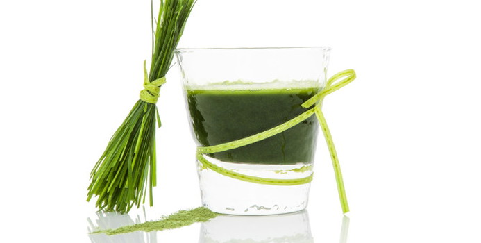 wheat grass_000026444342_Small.jpg