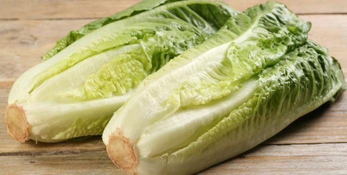 romaine lettuce_000049360374_Small.jpg