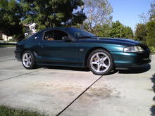my 95 stang