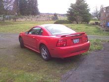Happy Mustang!
