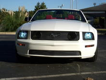 8000K HID Kit, billet grilles, smoked corners and fogs, white stubby antenna