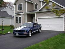 Mustang 2010 005