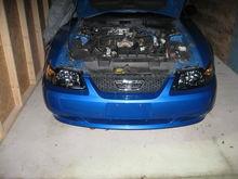 smoked headlights (pre BBK cai)