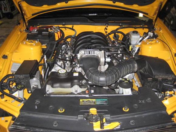 engine.. stock