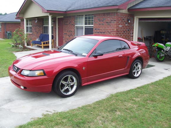 mikeys new stang