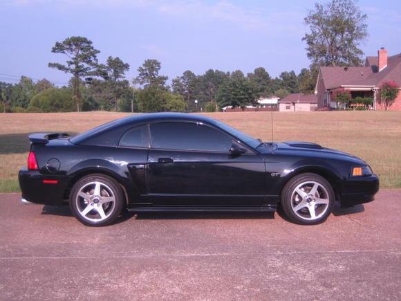 First Stang. Elena...2002 GT
