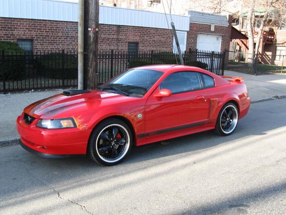 "My 04  ""40th"" Anniv Mach1"
