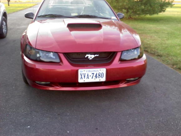 2003 mustang GT with new headlights and mach grille