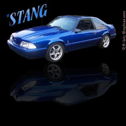 stang1
