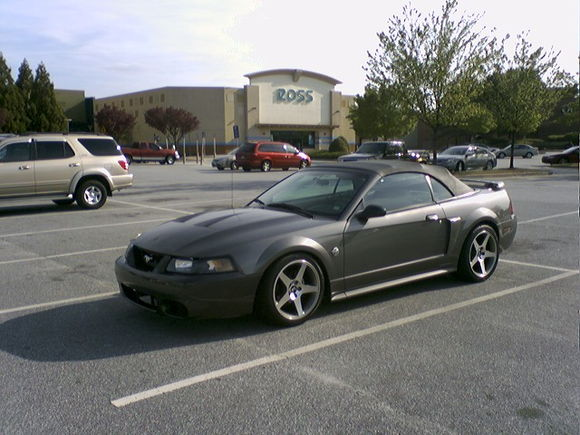 04 DSG Mustang Gt vert