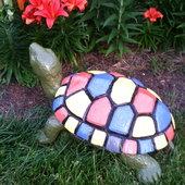 Painted turtle with Lilium Matrix