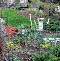 Shade Garden birdbath