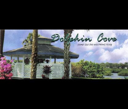 Dolphin Cove Villas New Smyrna Beach Fl