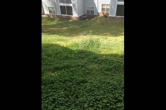 Garden Walk Apartments: Reviews & Prices For Garden Walk Apartments, College Park, GA