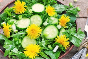 dandelion salad with cucumbers