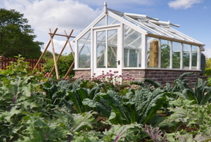 A greenhouse surrounded by a vegetable garden.