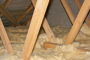 Attic beams and insulation.