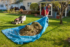 man doing yard work with grass trimmings on a tarp
