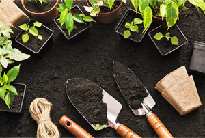 Gardening with tools, dirt, and plants