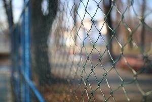 A chicken wire fence.