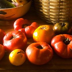 Solanum lycopersicum (tomatoes ripening indoors)