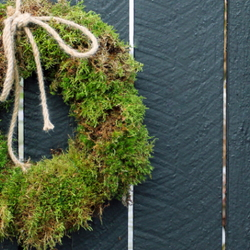 A living moss wreath hanging on a fence.