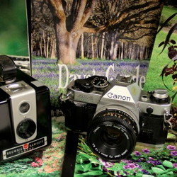 cameras and Dave's Garden calenders