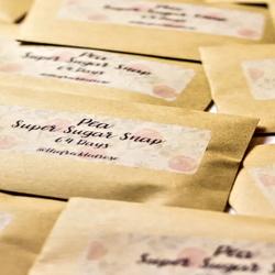 envelopes of saved seed