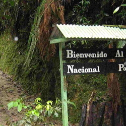 Enter Podocarpus Park sign