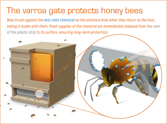 miticide protection via hive entrance trap