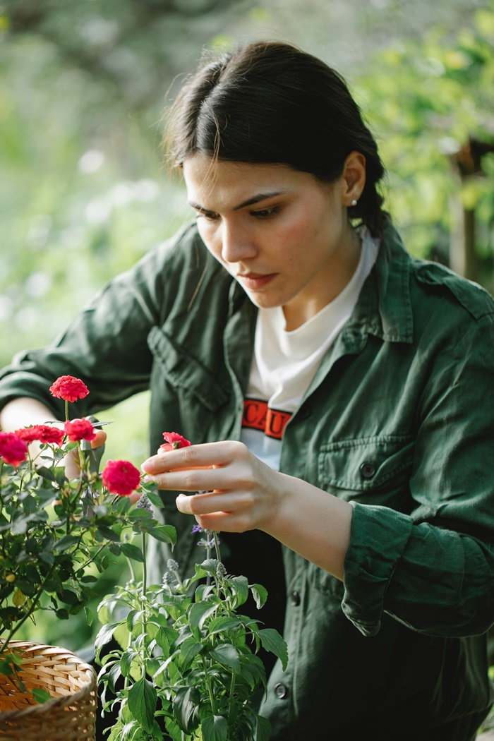 girl pruning potted plant
