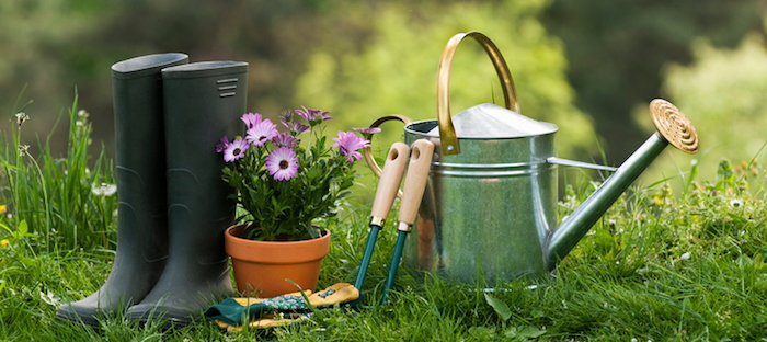 gardening color collection in of garden premium download htm vector for tools green