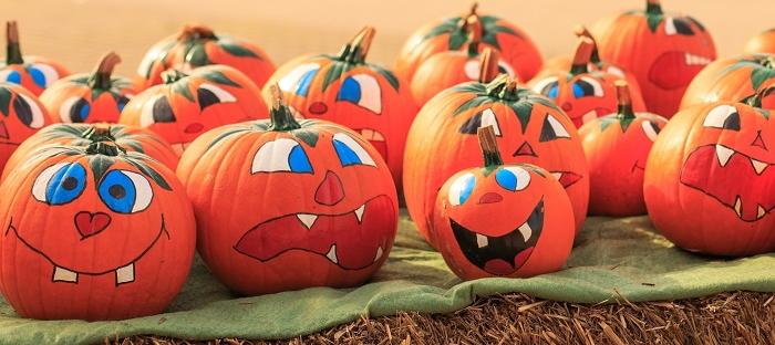 No-Carve Pumpkin Decorating Ideas - Dave\'s Garden