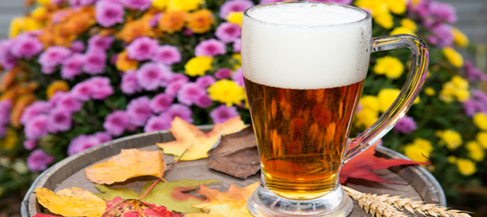 Beer glass on a tray in front of colorful flower bush