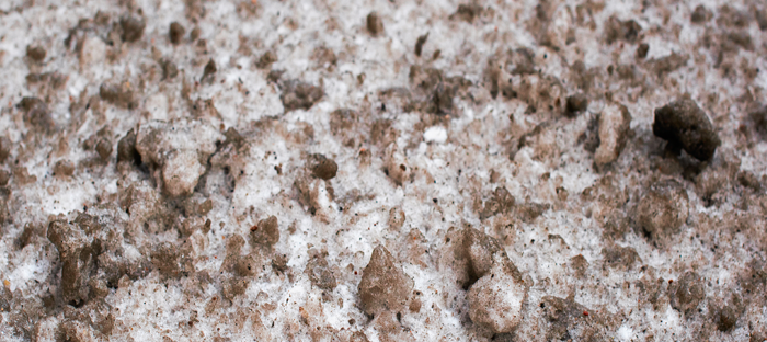 Soil with Snow and Ice