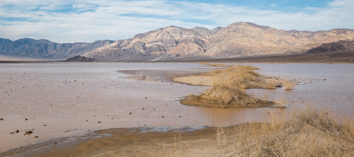 Death Valley Post Flooding