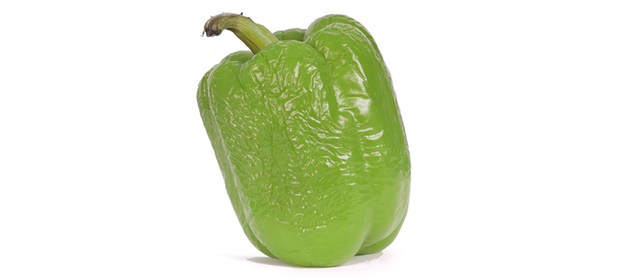 Overripe bell pepper with signs of wilting